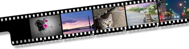 20160202_film_strip.jpg